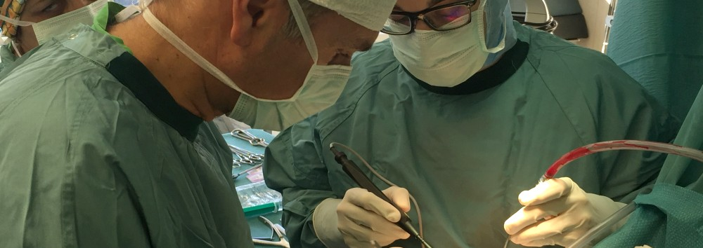 Dr. Hidas Péter sebész adjunktus